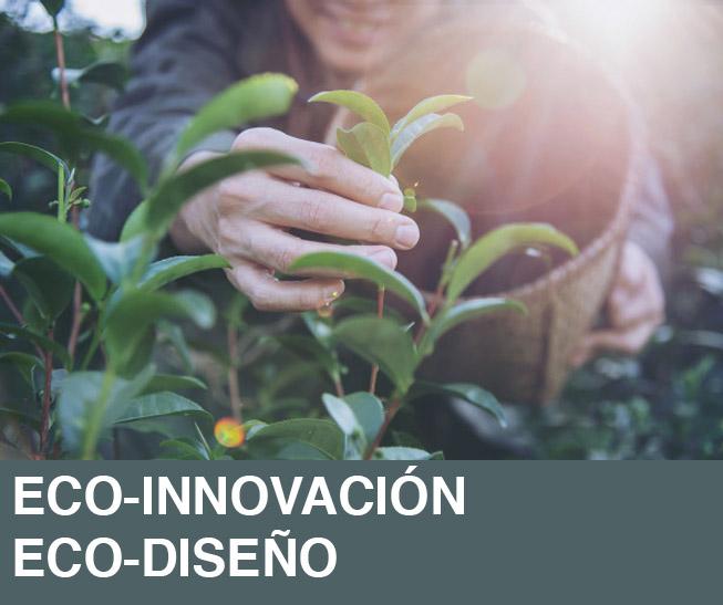 eco innovacion